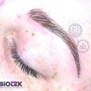 3D Hårstrå Bryn – opfyldning efter 6 uger
